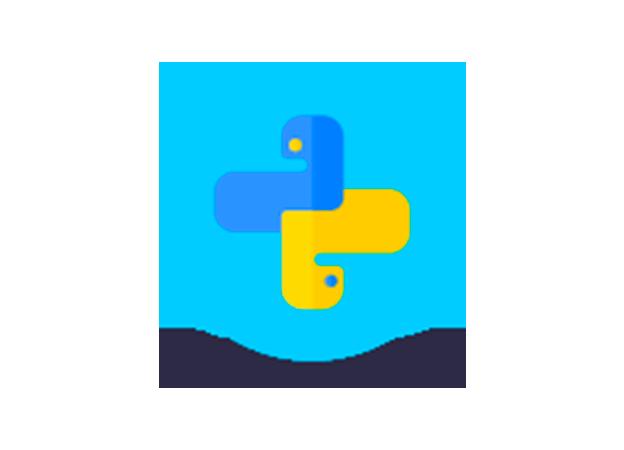 Lead développeur Python – Big data, Sport & IA